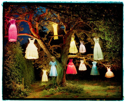 Tim_walker_dress_tree